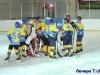 Хоккейный матч «Колос» – «Феникс»
