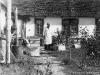 Разведение пчел в Печоре (16.07.1955 г.)