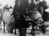 17 февраля 1961 г. День праздника Севера. Упряжка оленей около райисполкома. Фото из архива семьи Каманчаджан.