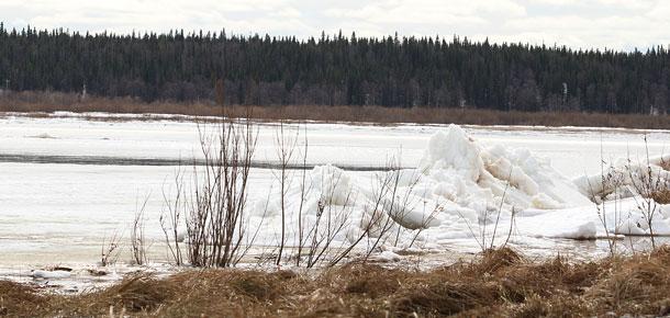 По сообщениям Коми ЦГМС, в прошедшие сутки изменений в ледовой обстановке на реке Печоре не произошло