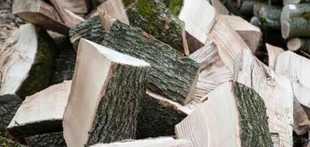 «В лес, по дрова»