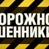 В Печорском филиале Республиканской общественной приемной главы республики пройдет прямая линия