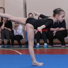 Соревновались гимнастки – ФОТО