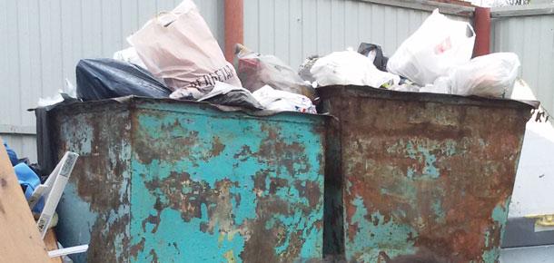 Администрация Печоры объявила аукцион на закупку дополнительных контейнеров для сбора ТКО